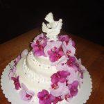 torta[1]